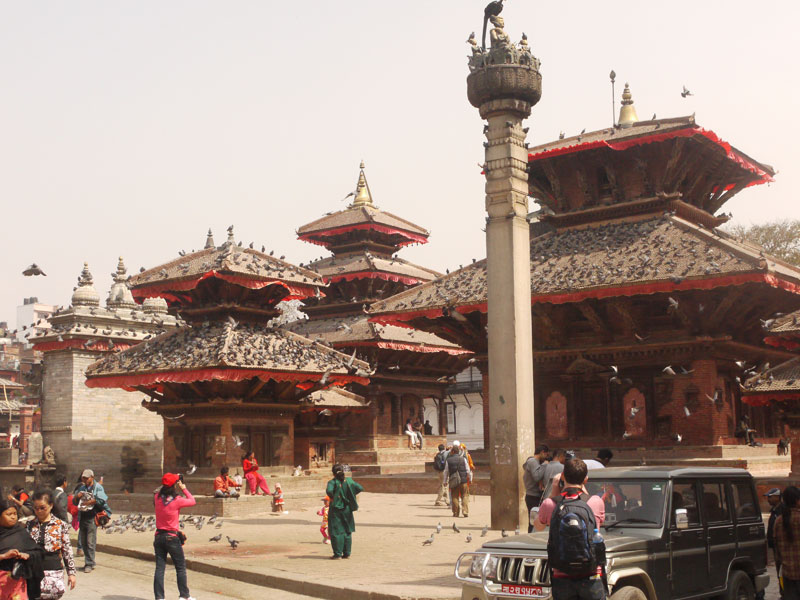 Pigeons sitting on temples in Kathmandu's Durbar Square