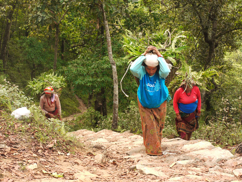 Local women carrying animal feed along the path we hiked to the World Peace Pagoda