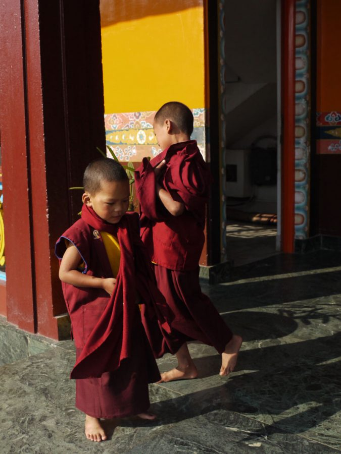 Young monks at Jangchub Choeling Gompa in the Tibetan refugee settlememt Tashi Palkhel