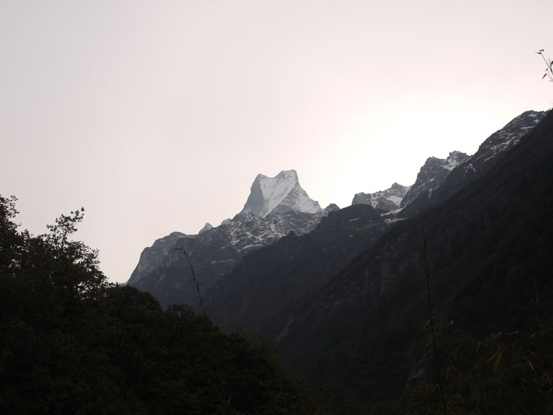 Snowcapped Machhapuchhre or 'Fishtail' mountain in the distance