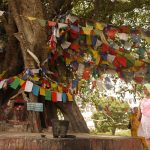 Lumbini, Nepal; The Birthplace of The Buddha