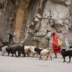 Exploring The Variety of the Parvati Valley in Himachal Pradesh, India