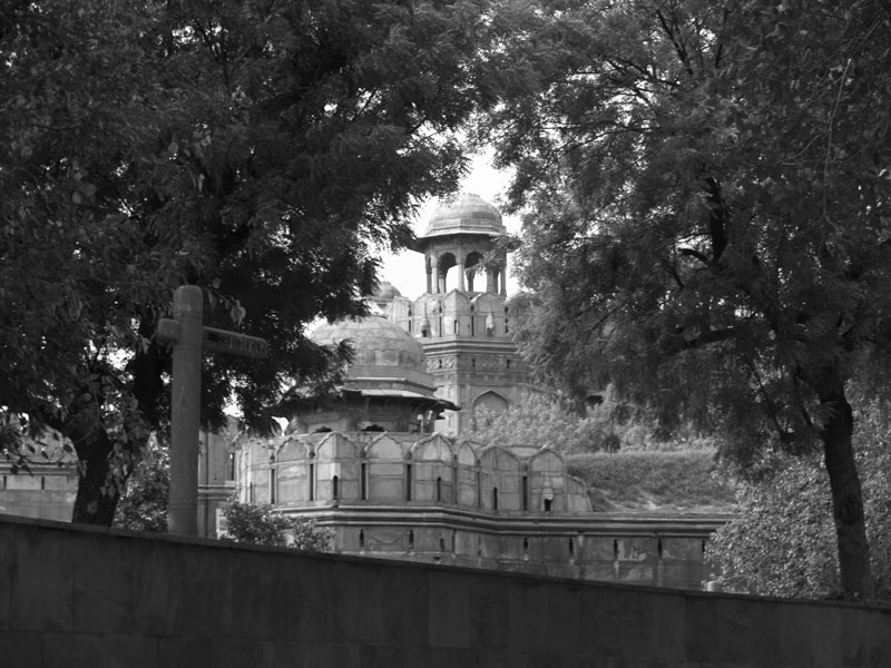 Delhi's Red Fort through the trees