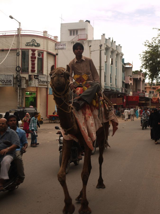 Casually camel riding through the streets of Hyerbad
