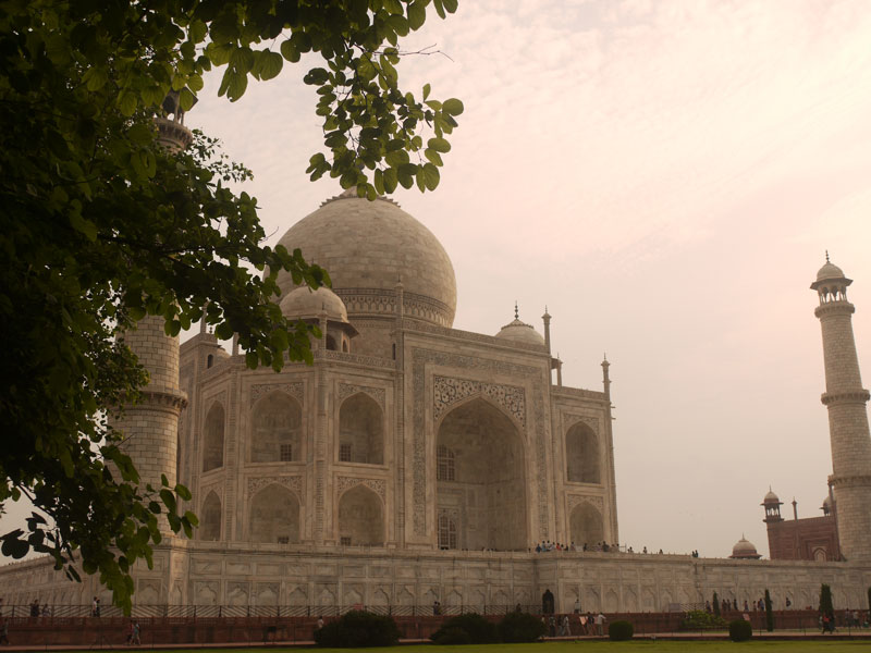 The Taj Mahal through the trees from the Mughal gardens