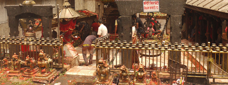 VIDEO Animal Sacrifices At The Dakshinkali Temple, Kathmandu, Nepal