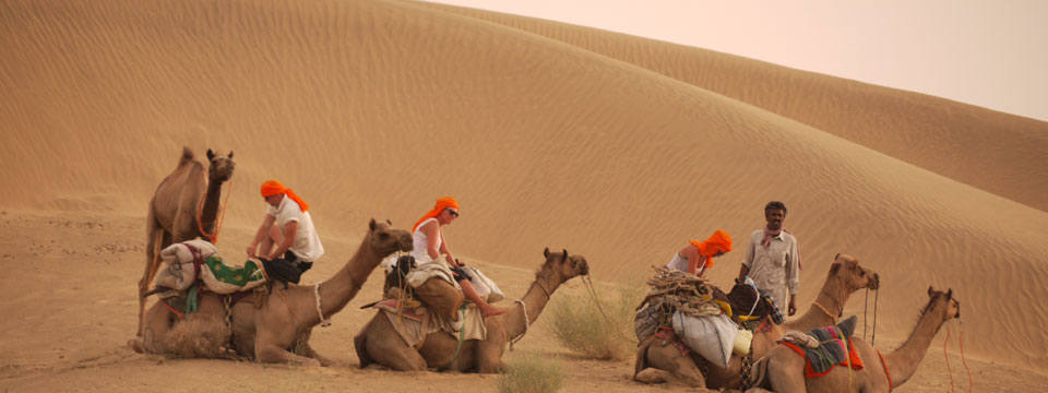 VIDEO On Camel Safari In The Thar Desert, Rajasthan, India