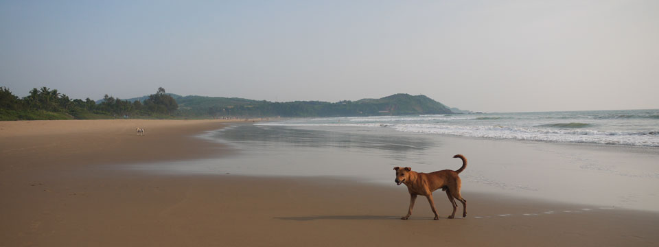 Quiet Sands of Kudle Beach, Gokarna, Southern India