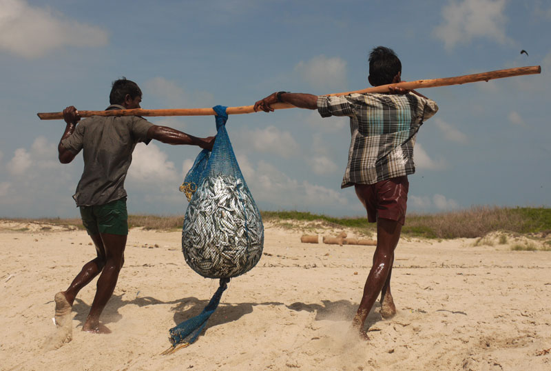 Hauling in the days catch at the remote fishing village of Dhanushkodi