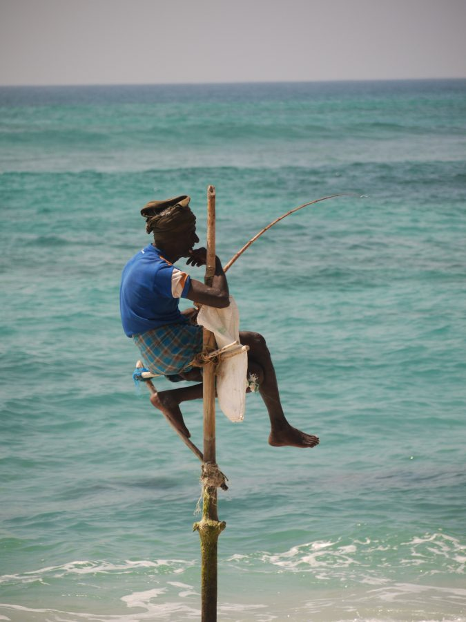 Stilt Fisherman, near Weligama, Sri Lanka