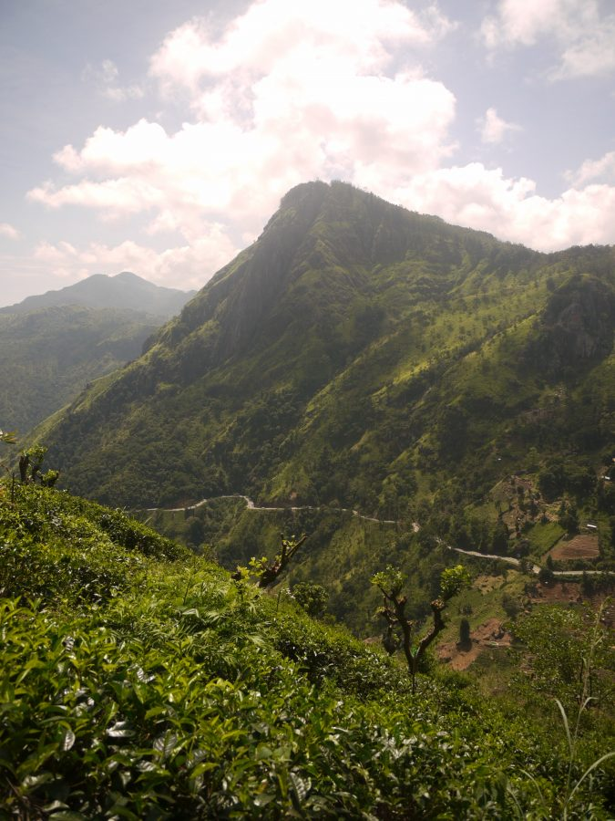 View from Little Adam's Peak, Ella, Sri Lanka