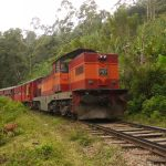 VIDEO Sri Lankan Busker Performs Crazy Stunt On A Moving Train