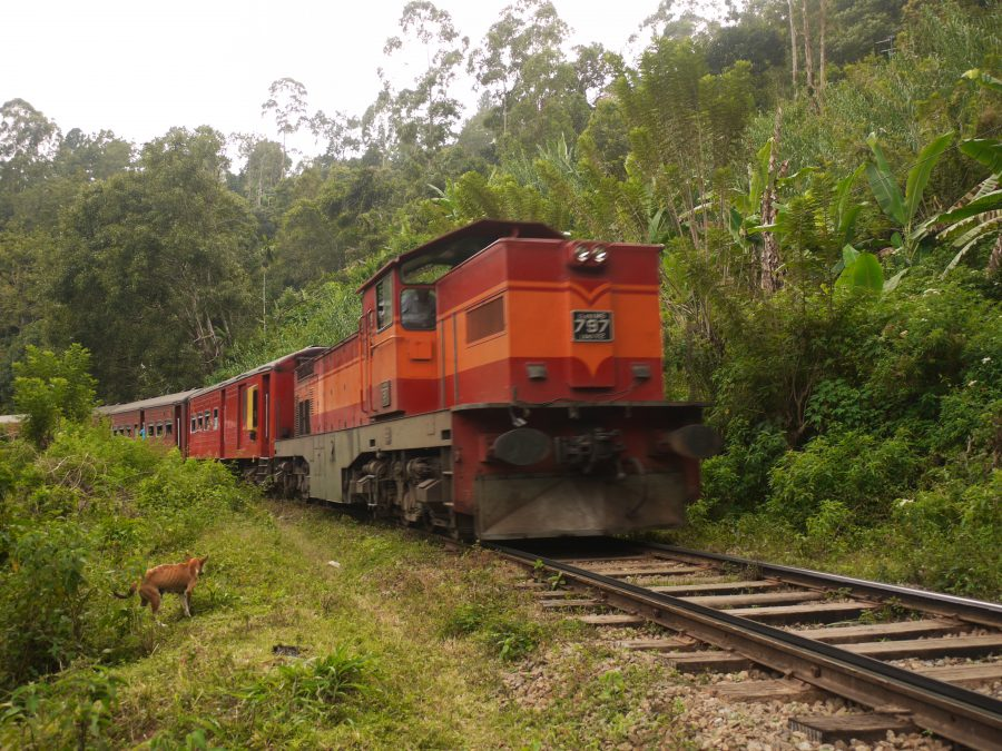 Standing in out of the way as the train comes by, Ella, Sri Lanka