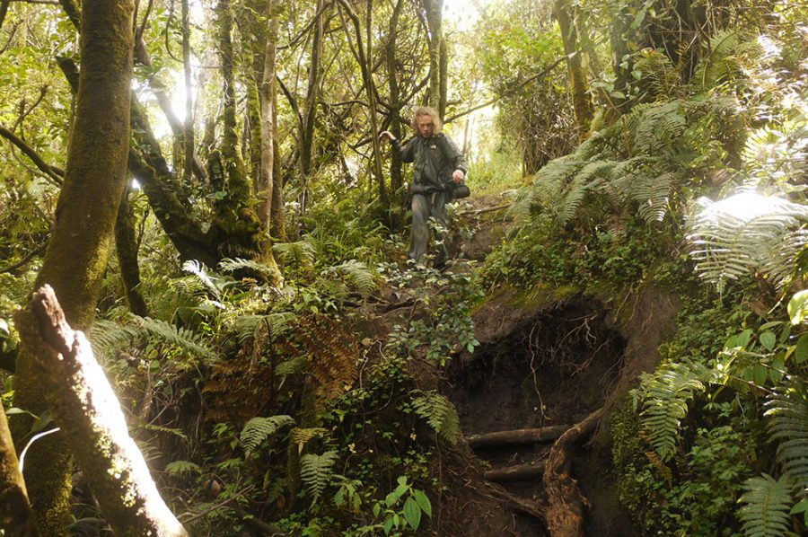 Brian coming down through the Sumatran Jungle on the descent from Mount Kerinci