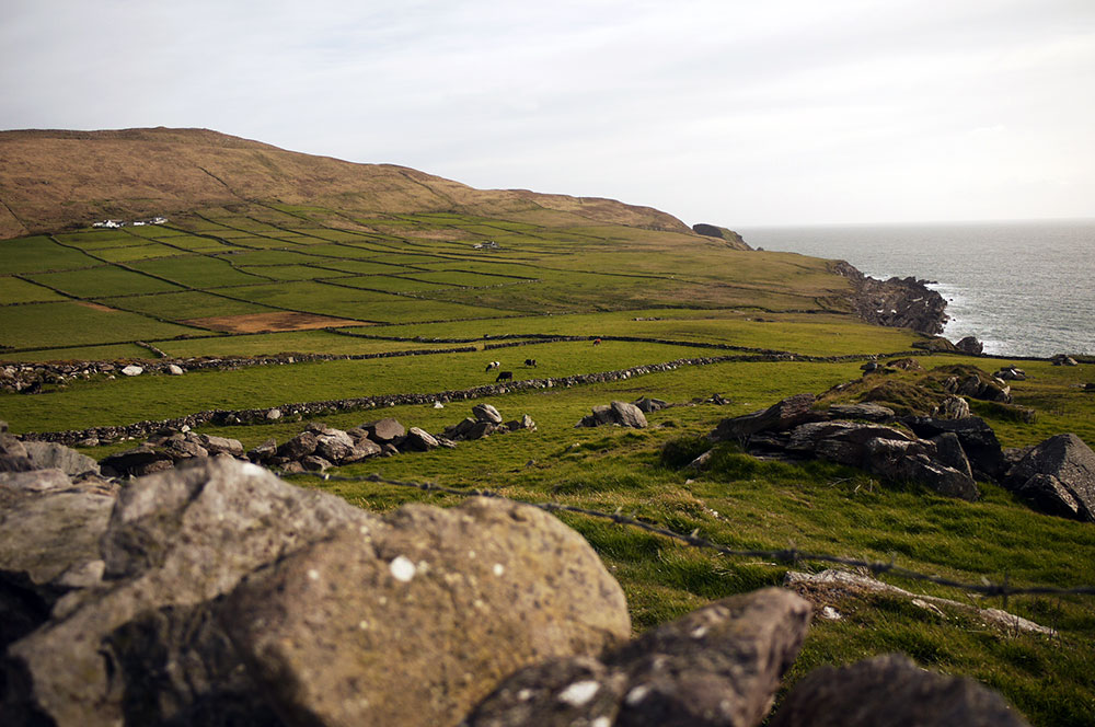 Photo Essay: Driving To Mizen Head; Ireland's Most Southerly Point