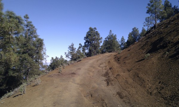 Mountainbiking trails in Tenerife