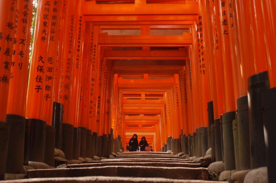Orange tori of Fushimi Inari Shrine, Kyoto