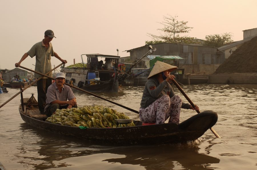 Paddling a cargo of bananas down the Mekong Delta