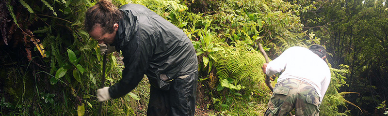 Hiking Mount Kerinci, Sumatra - Wandering On