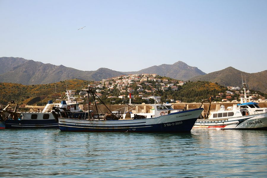 Fishing Boats at Llançà Harbour