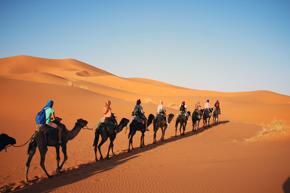 On camel safari in the Sahara desert, Morocco