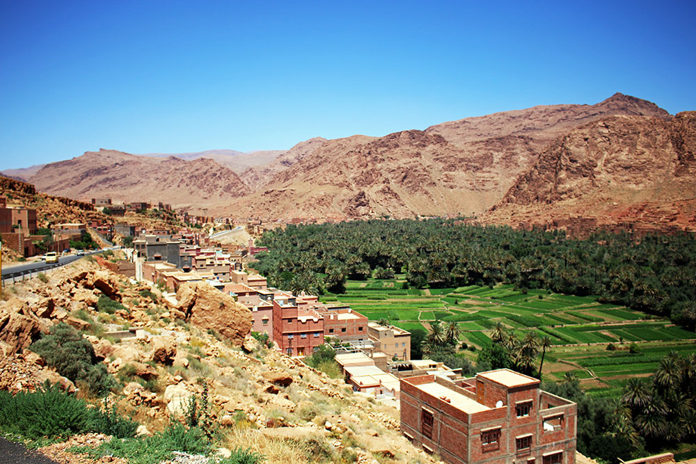 Bizarre landscape of central Morocco - an oasis of green surrounded by barren desert.
