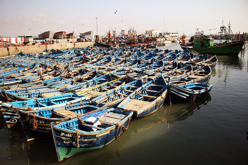 Fishing boats moored in the fishing town of Essaouira.