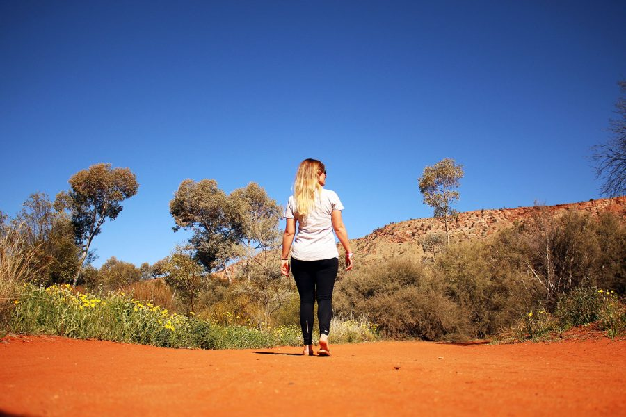 Walking throught the Alice Springs Desert Park on a beautiful day