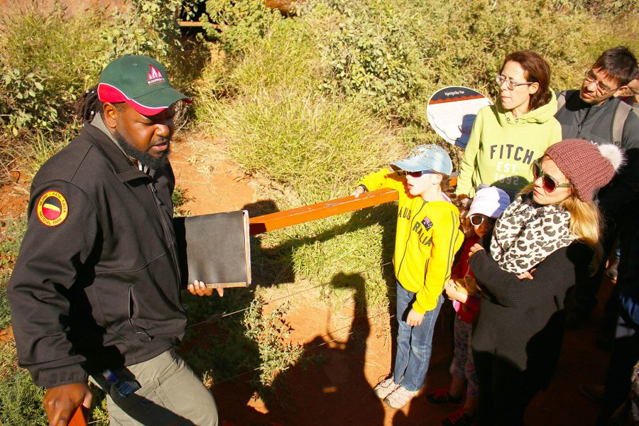 Mala Ranger Guided Walk at Uluru