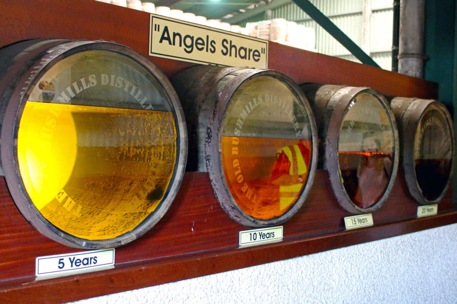 Angels Share explained with a display at bushmills whiskey distillery | Giant's Causeway Coastal Route