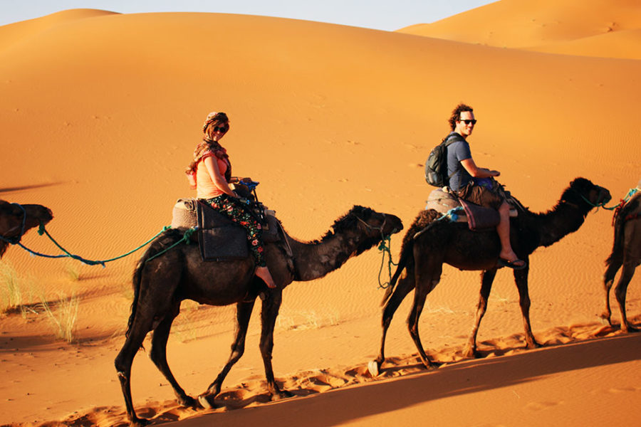 holiday travel insurance - On camel safari in the Sahara Desert, Morocco